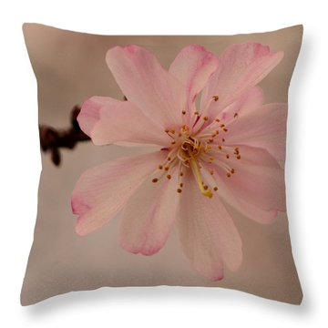 Spring Pink Throw Pillow by Larry Bishop