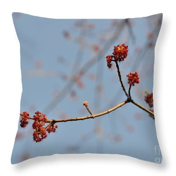 Spring Promise Throw Pillow