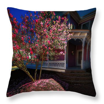 Spring R Sprung 3 Throw Pillow