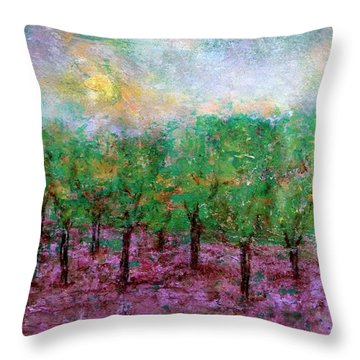 Spring Rain Throw Pillow by Jim Whalen