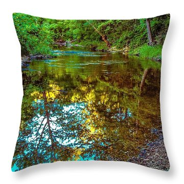 Spring Reflection  Throw Pillow by Peggy Franz