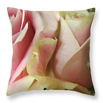 Spring Romance Pink Roses Throw Pillow by Danielle  Parent
