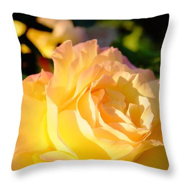 Spring Rose Throw Pillow