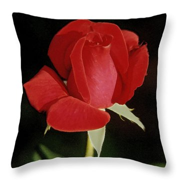 Spring Rose - Taos New Mexico Throw Pillow