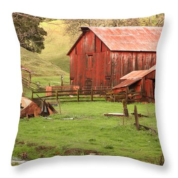 Spring Run-off Throw Pillow by Art Block Collections