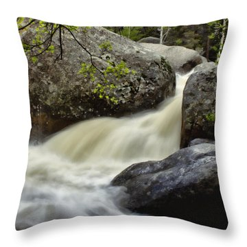 Throw Pillow featuring the photograph Spring Runoff by Ellen Heaverlo