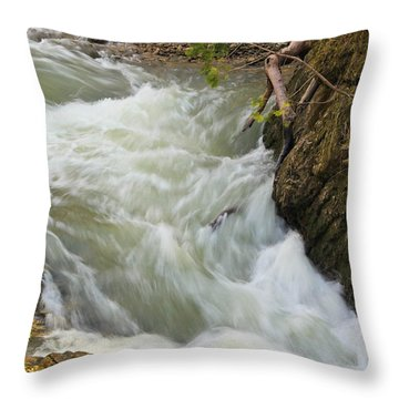 Spring Rush Throw Pillow