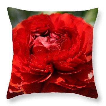 Spring Scarlet Double Begonia Throw Pillow