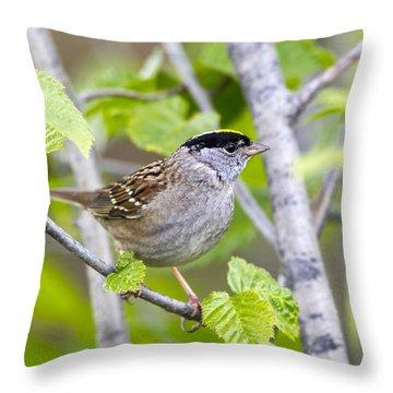 Spring Scene Throw Pillow