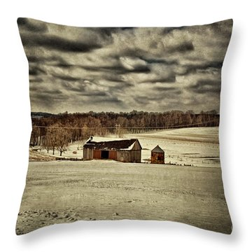 Spring Snows Throw Pillow by Lois Bryan
