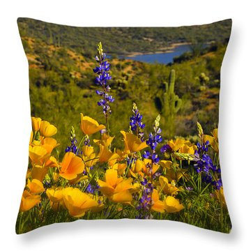 Spring Southwest Style  Throw Pillow