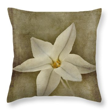 Starflower Home Decor