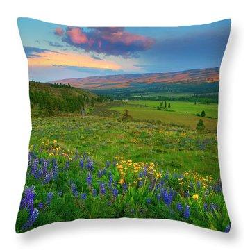 Spring Storm Passing Throw Pillow