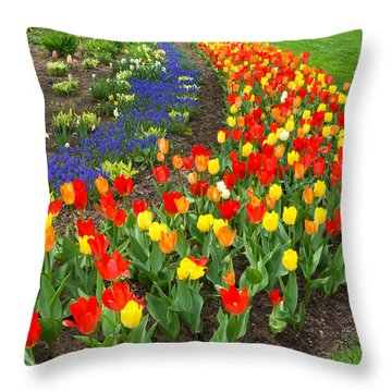Spring Streaming By Throw Pillow