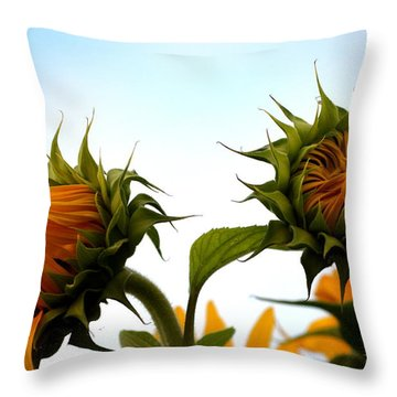 Spring Sun Shine Throw Pillow by Gregory Merlin Brown