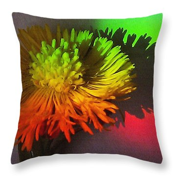 Throw Pillow featuring the photograph Spring Through A Rainbow by Martin Howard