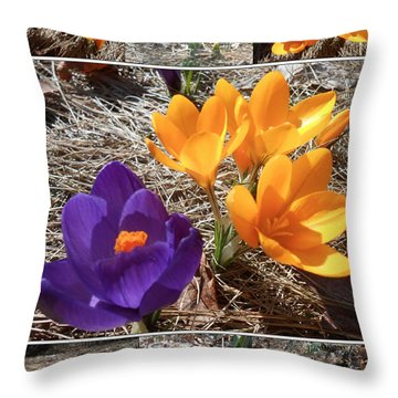 Spring Time Crocuses Throw Pillow by Patricia Keller