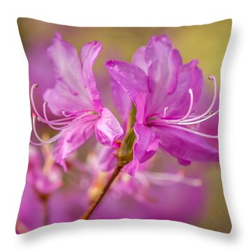 Throw Pillow featuring the photograph Spring To Life by Ken Stanback