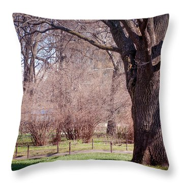 Spring Tree At Soft Rosy Spring In The Garden Throw Pillow by Jenny Rainbow