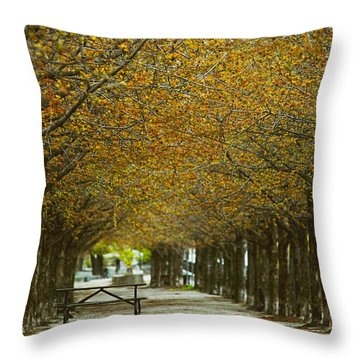 Throw Pillow featuring the photograph Spring Trees Blossoming In Montreal by Sandra Cunningham