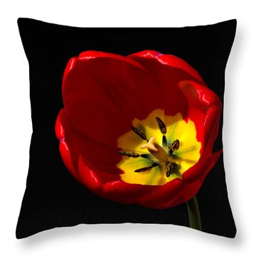 Spring Tulip 2 Throw Pillow