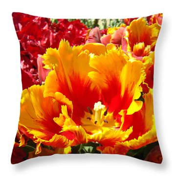 Spring Tulip Flowers Art Prints Yellow Red Tulip Throw Pillow by Baslee Troutman