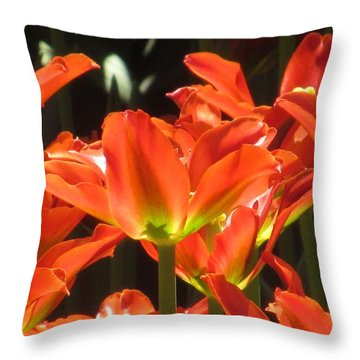 Spring Tulips Throw Pillow by Alfred Ng