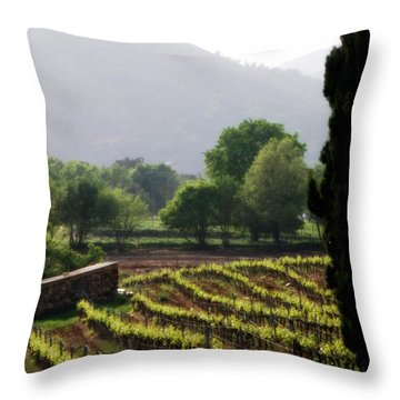 Spring Vines In Provence Throw Pillow by Lainie Wrightson