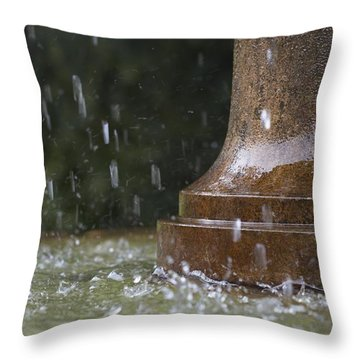 Throw Pillow featuring the photograph Spring Water Fountain by Colleen Williams