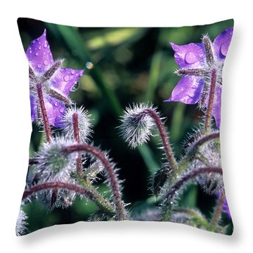 Throw Pillow featuring the photograph Spring Wild Flowers by George Atsametakis