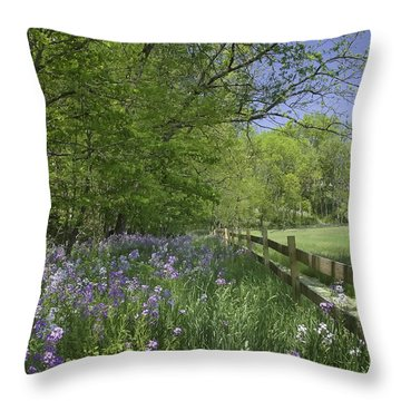 Spring Wildflowers Throw Pillow