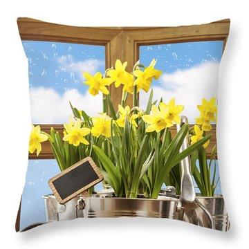 Spring Window Throw Pillow by Amanda Elwell