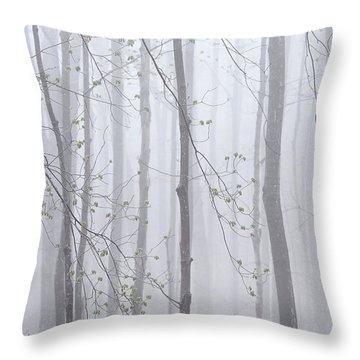 Throw Pillow featuring the photograph Spring Woodland Fog 1 by Alan L Graham
