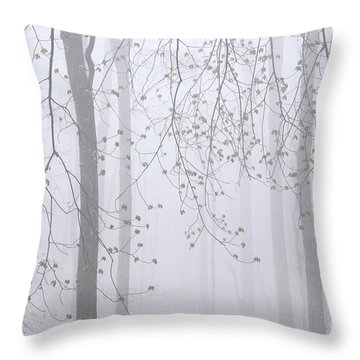Throw Pillow featuring the photograph Spring Woodland Fog 2 by Alan L Graham
