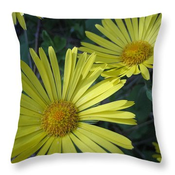 Spring Yellow  Throw Pillow by Cheryl Hoyle