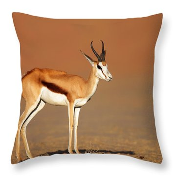Springbok On Sandy Desert Plains Throw Pillow by Johan Swanepoel