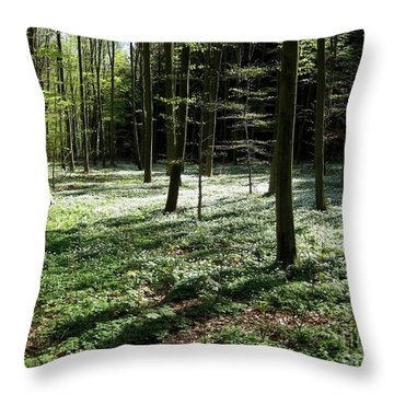 Throw Pillow featuring the photograph Springforest by Susanne Baumann