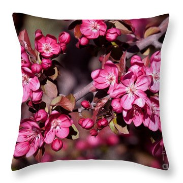 Throw Pillow featuring the photograph Spring's Arrival by Roselynne Broussard