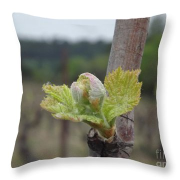 Spring In The Vineyard Throw Pillow by France  Art