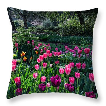 The Promise Of Spring Throw Pillow by Lynn Bauer