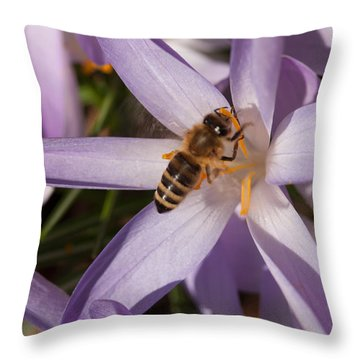 Spring's Welcome Throw Pillow
