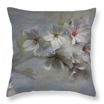 Springtime Throw Pillow by Anne Rodkin