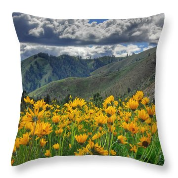 Springtime At Gallagher Throw Pillow