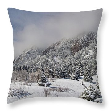 Springtime Colorado Rocky Mountains Boulder Throw Pillow by James BO  Insogna