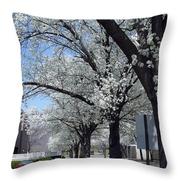 Springtime Corning Ny 2 Throw Pillow