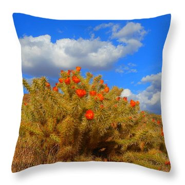 Springtime In Arizona Throw Pillow by James Welch