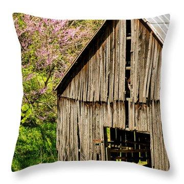 Springtime In Kentucky Throw Pillow