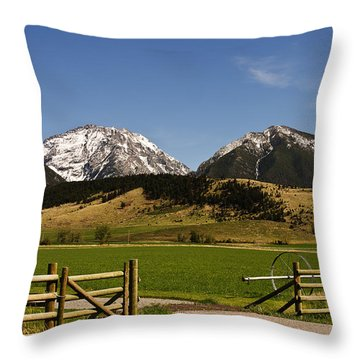 Throw Pillow featuring the photograph Springtime In Montana by Sue Smith