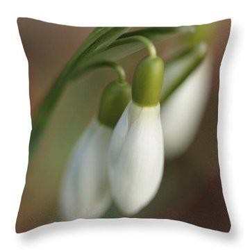 Springtime In Motion Throw Pillow