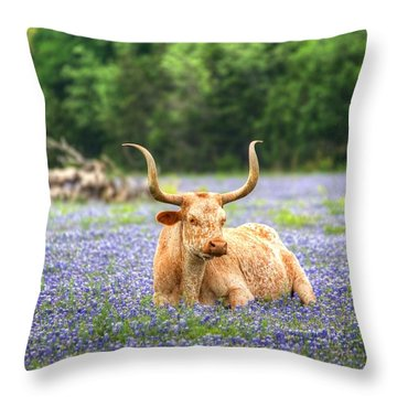 Springtime In Texas Throw Pillow by Dave Files